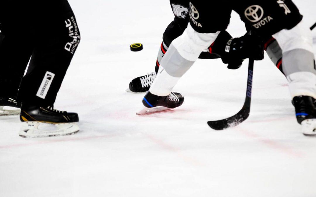 Leder du efter professionelt hockeyudstyr?